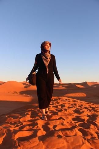 Sahara Desert purses & planes