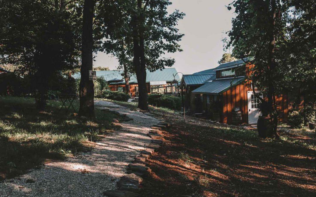 An evening at Bear Creek Winery