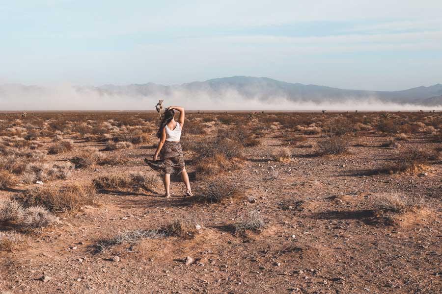 seven magic mountains desert